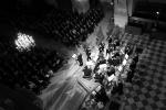 Los Músicos de Su Alteza (Paris, Invalides)
